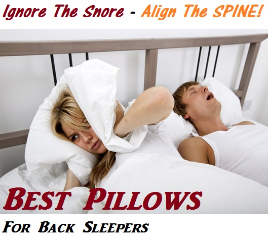 What is the best pillow for back sleepers with neck and for Best down pillow for back sleepers