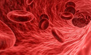 Blood Circulation After Heat Therapy